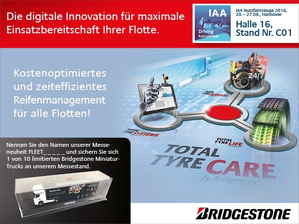 Interstitial Bridgestone