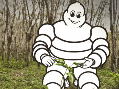 """Für jeden bis zum 31. Mai in einer Euromaster-Servicefiliale erworbenen Michelin """"E.Primacy"""" spenden der Reifenhersteller und seine Handelstochter Geld an die deutsche Umwelt- und Klimaschutzorganisation Plant-My-Tree, die pro Reifen in Deutschland zwei Bäume pflanzt (Bild: Michelin)"""
